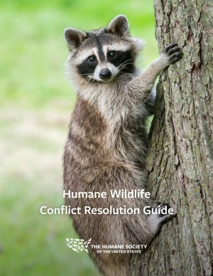 Humane Wildlife Conflict Resolution Guide