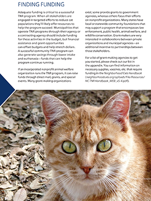 Managing Community Cats: Finding Funding