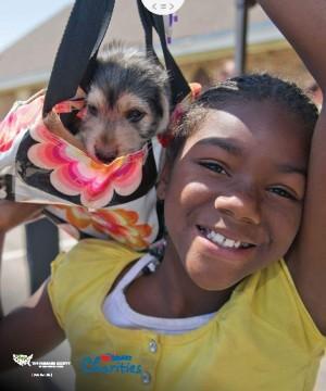 Pets for Life Toolkit: Testimonials