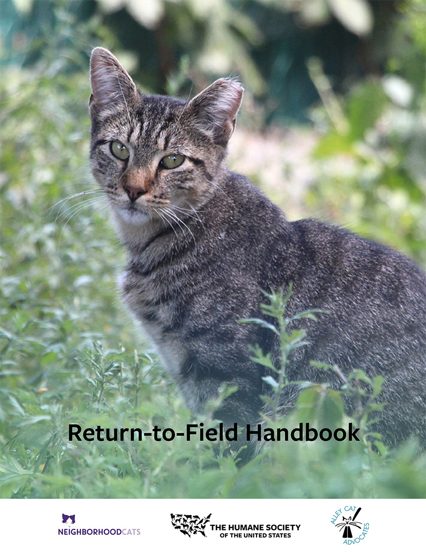 Return to field handbook cover
