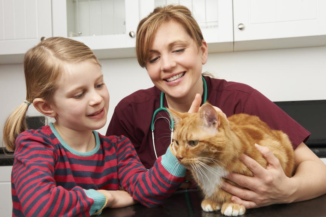 Veterinarian with girl and cat