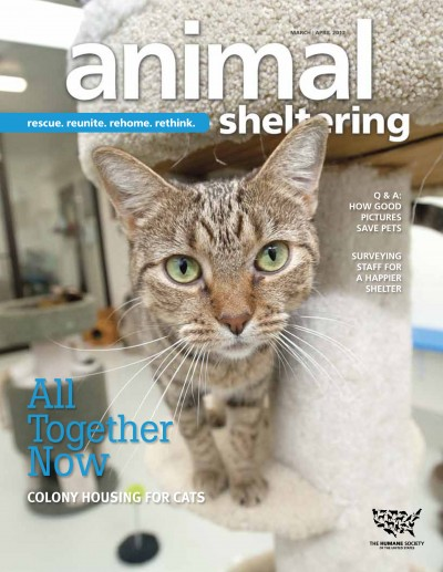 Animal Sheltering magazine March/April 2012