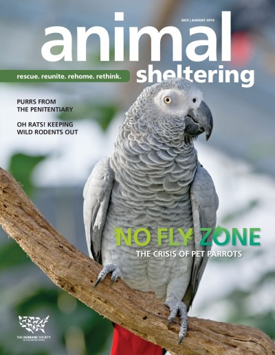 Animal Sheltering Magazine July/August 2013