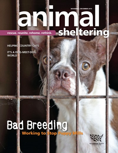 Animal Sheltering Magazine November/December 2013
