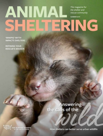 Animal Sheltering magazine summer 2019 cover