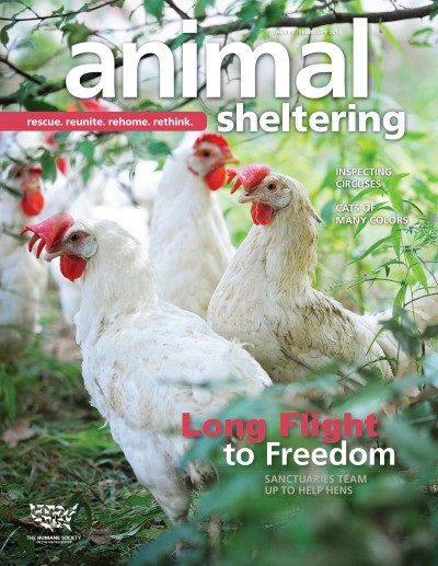 Animal Sheltering Magazine January/February 2014