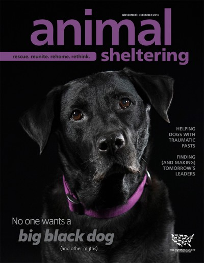 Animal Sheltering magazine November/December 2016