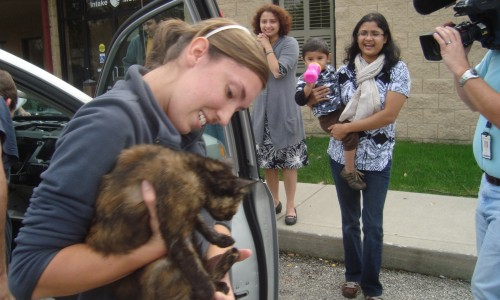 Tara Pahl, a customer care associate at the Capital Area Humane Society in Ohio, pulled Dasha the cat out of a minivan dashboard to greet a cheering crowd that included a local television camera.