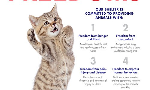 <em>Animal Sheltering</em> magazine Spring 2018