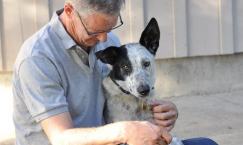 Marin Humane's No Place Like Home program helps pets move directly from one home to another.