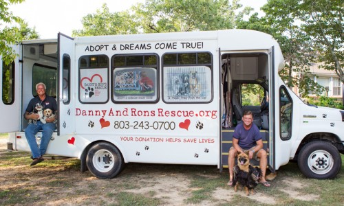 Danny and Ron's Rescue cares for as many as 100 dogs at one time in a sprawling, ranch-style house on their farm.