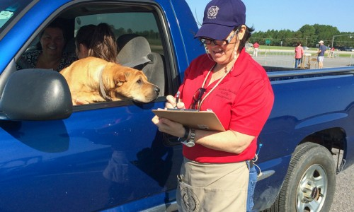 Pet owners check in and pay at a series of booths before rolling on to vaccination tents.