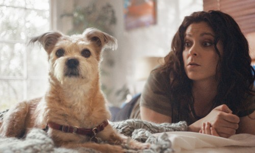 Rachel Bloom and her dog Wiley promote adoption with videos and public service announcements for the Shelter Pet Project.