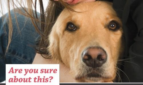 <em>Animal Sheltering</em> magazine March/April 2012