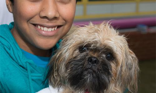 Pets for Life: Community Outreach Toolkit