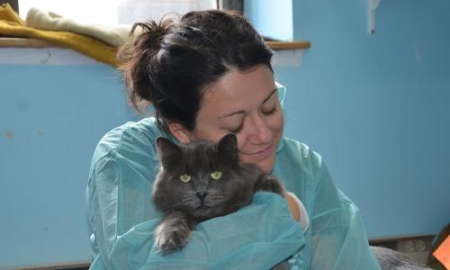 volunteer hugging cat