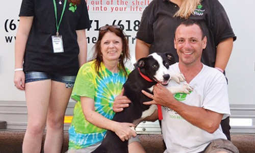Penny, the 100th dog to be part of the Humane Society of Flower Mound's Love on Wheels program, in collaboration with Helping Hounds Dog Rescue of Dewitt, N.Y., is showered with attention from rescue volunteers Alexandra Bullard, Carolin Murphy, and Jim Hobbs, and staff member Theresa Calarese.