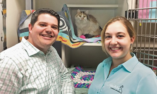 Adopters Douglas Dohr and Rachael Bulter were looking for a companion for their cat. They ended up finding his sister!