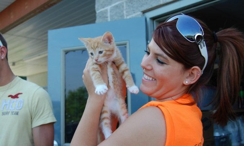 Kasey Martini gives a kitten a better view of things during a Rescue U project in Braxton County, W.Va.